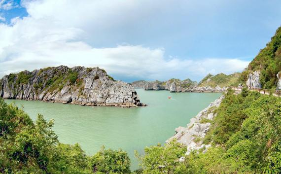 IUCN activities in Halong – Cat Ba Alliance