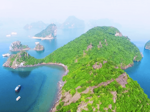 Halong - Cat Ba Alliance. Protect Halong Bay Environment
